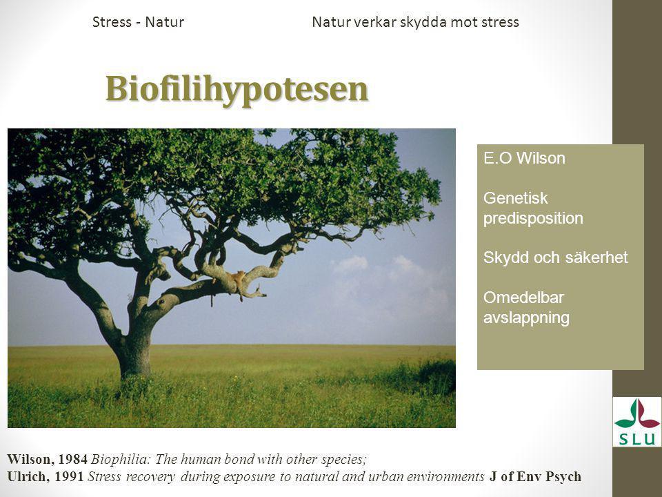 Biofilihypotesen Stress - Natur Natur verkar skydda mot stress