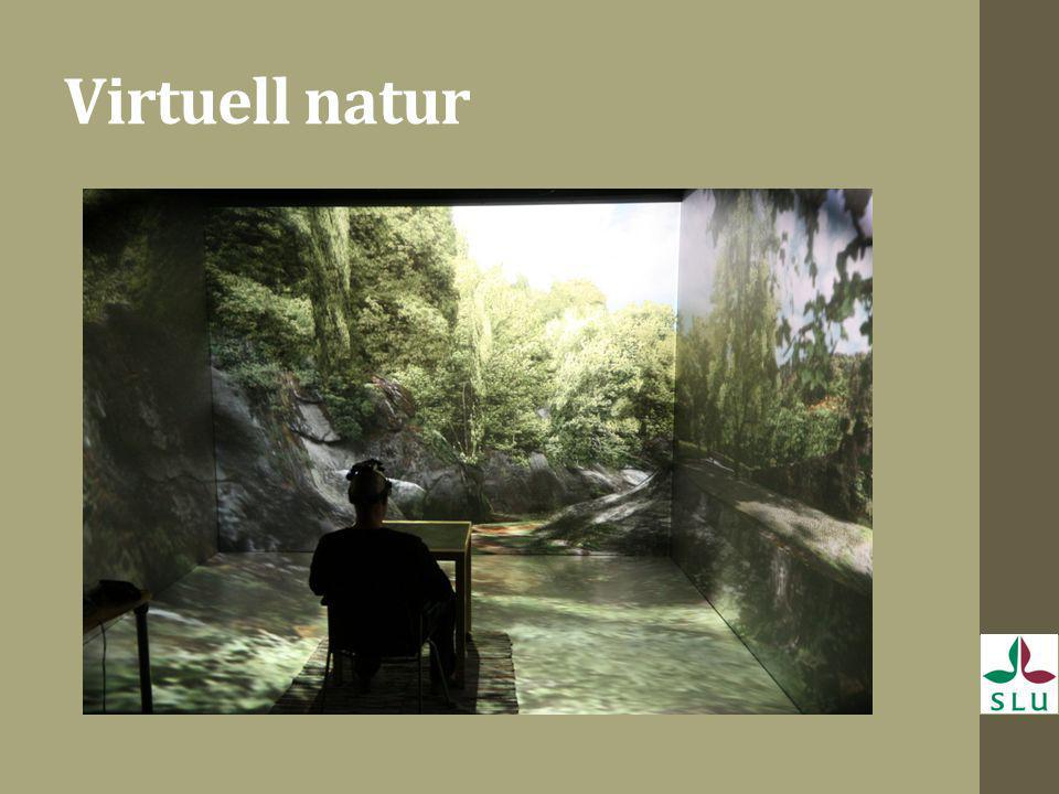 Virtuell natur