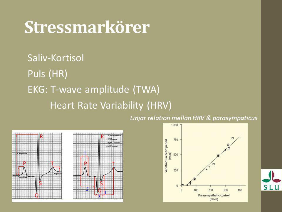Stressmarkörer Saliv-Kortisol Puls (HR) EKG: T-wave amplitude (TWA)