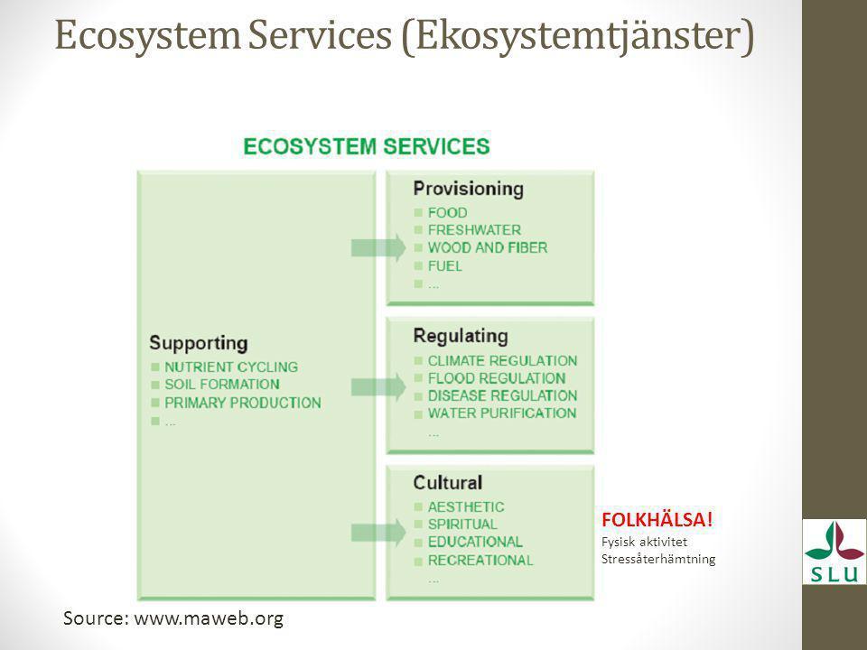 Ecosystem Services (Ekosystemtjänster)