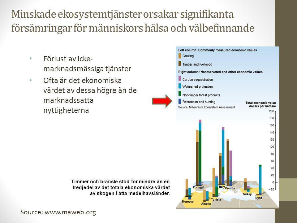 Minskade ekosystemtjänster orsakar signifikanta försämringar för människors hälsa och välbefinnande