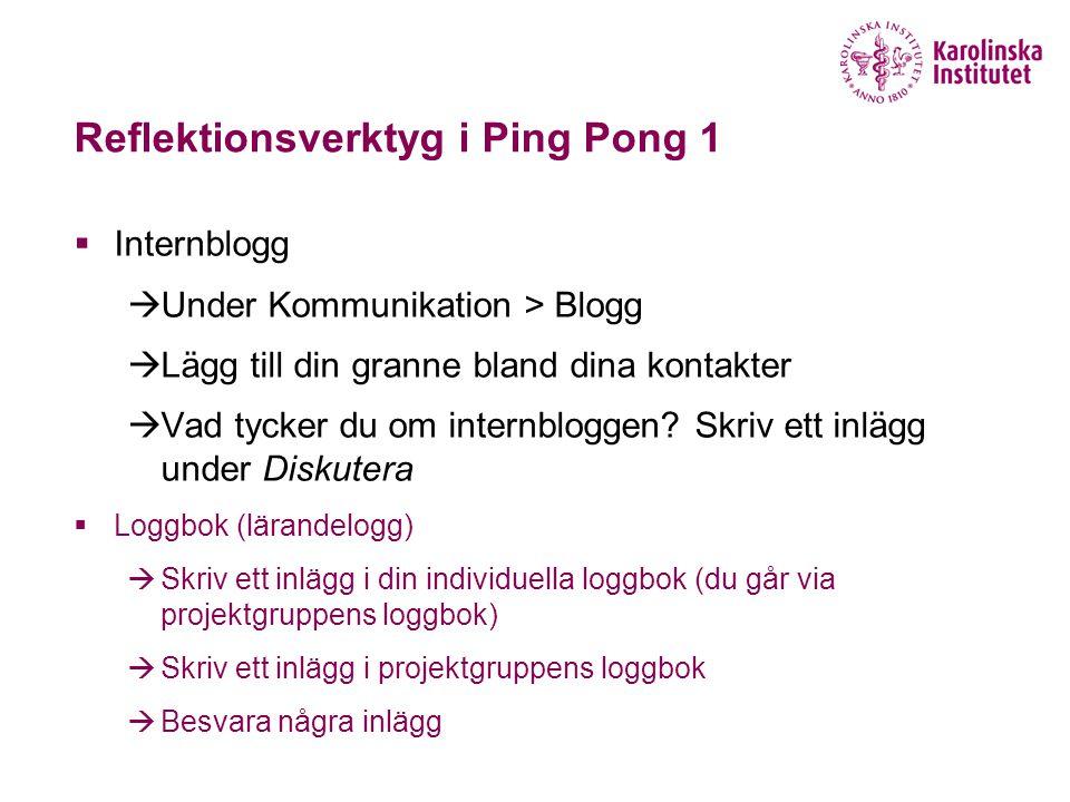 Reflektionsverktyg i Ping Pong 1