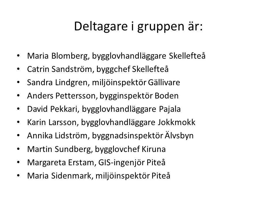 Deltagare i gruppen är: