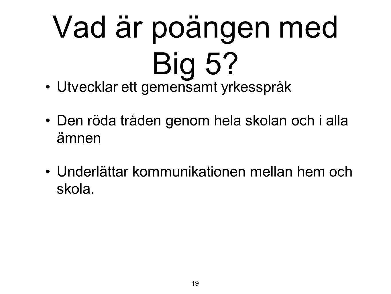 Vad är poängen med Big 5 Utvecklar ett gemensamt yrkesspråk