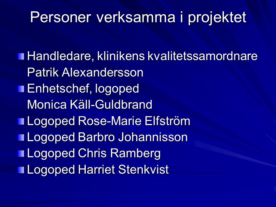 Personer verksamma i projektet