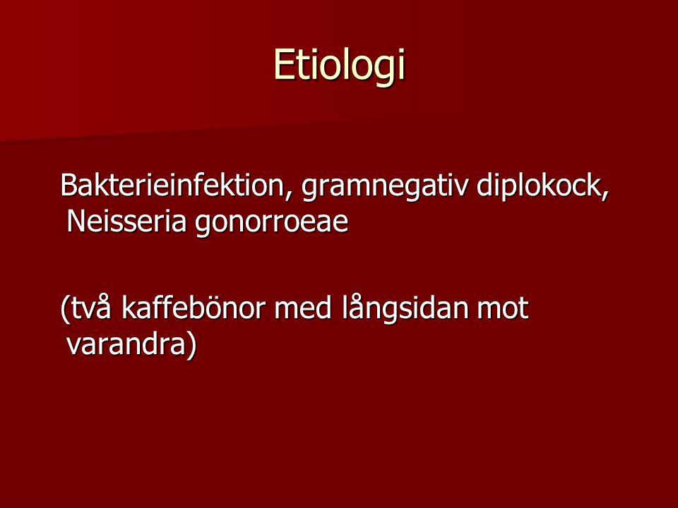 Etiologi Bakterieinfektion, gramnegativ diplokock, Neisseria gonorroeae.