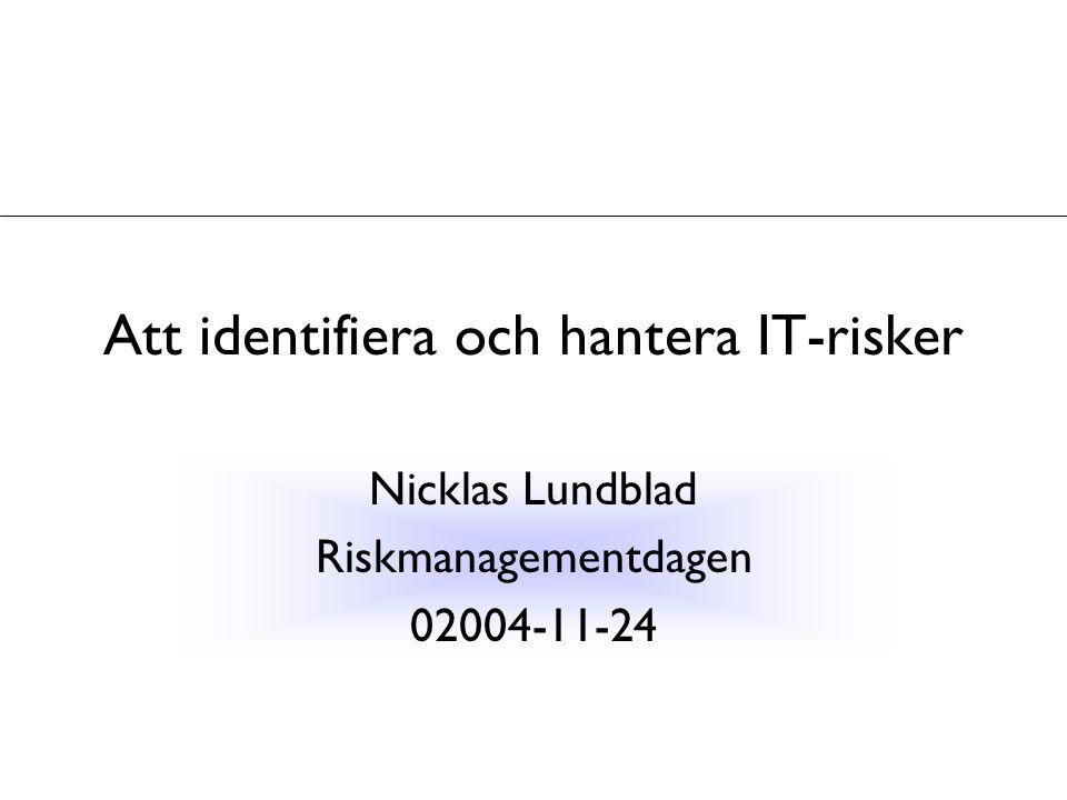 Att identifiera och hantera IT-risker