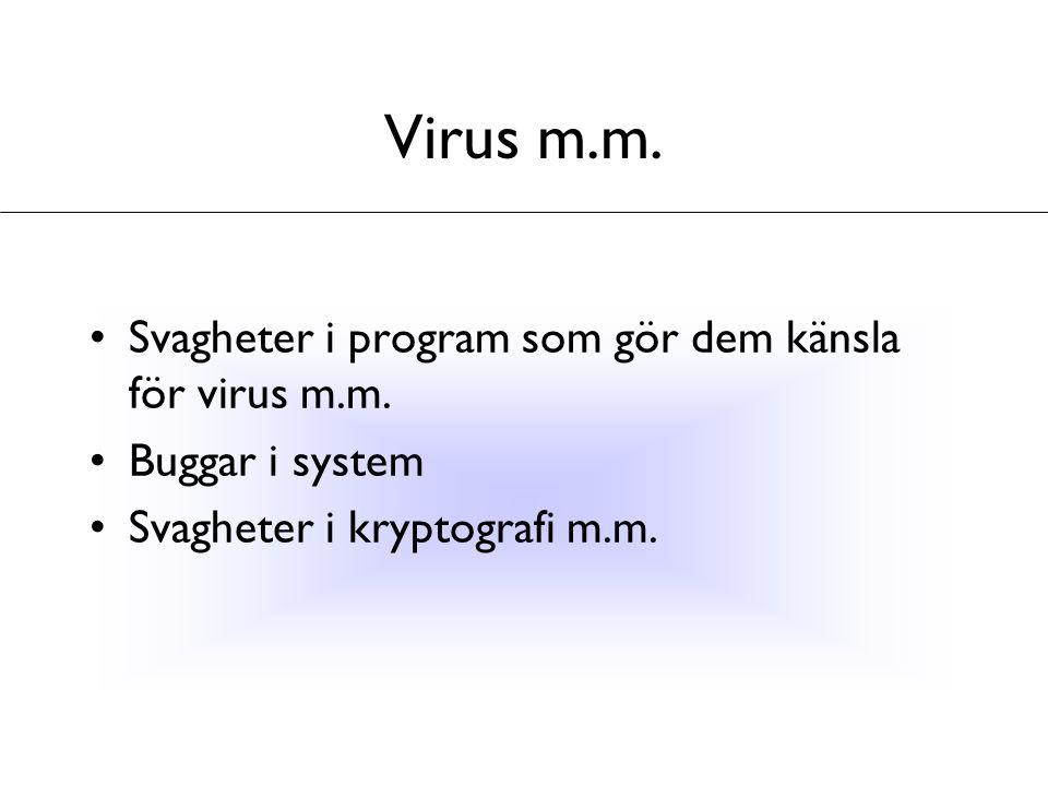 Virus m.m. Svagheter i program som gör dem känsla för virus m.m.