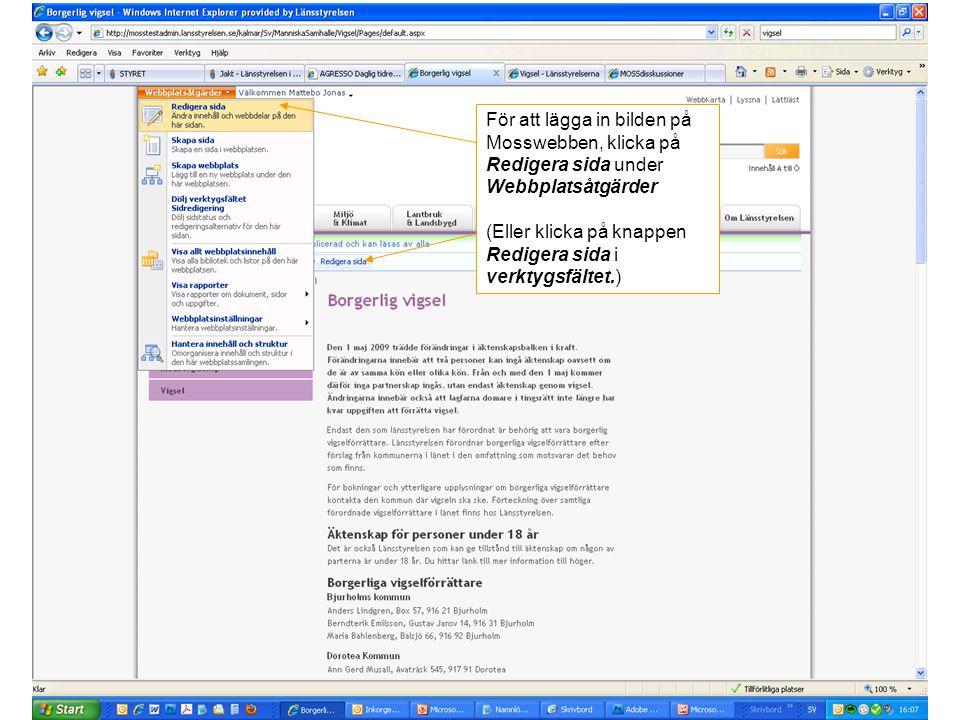 För att lägga in bilden på Mosswebben, klicka på Redigera sida under Webbplatsåtgärder