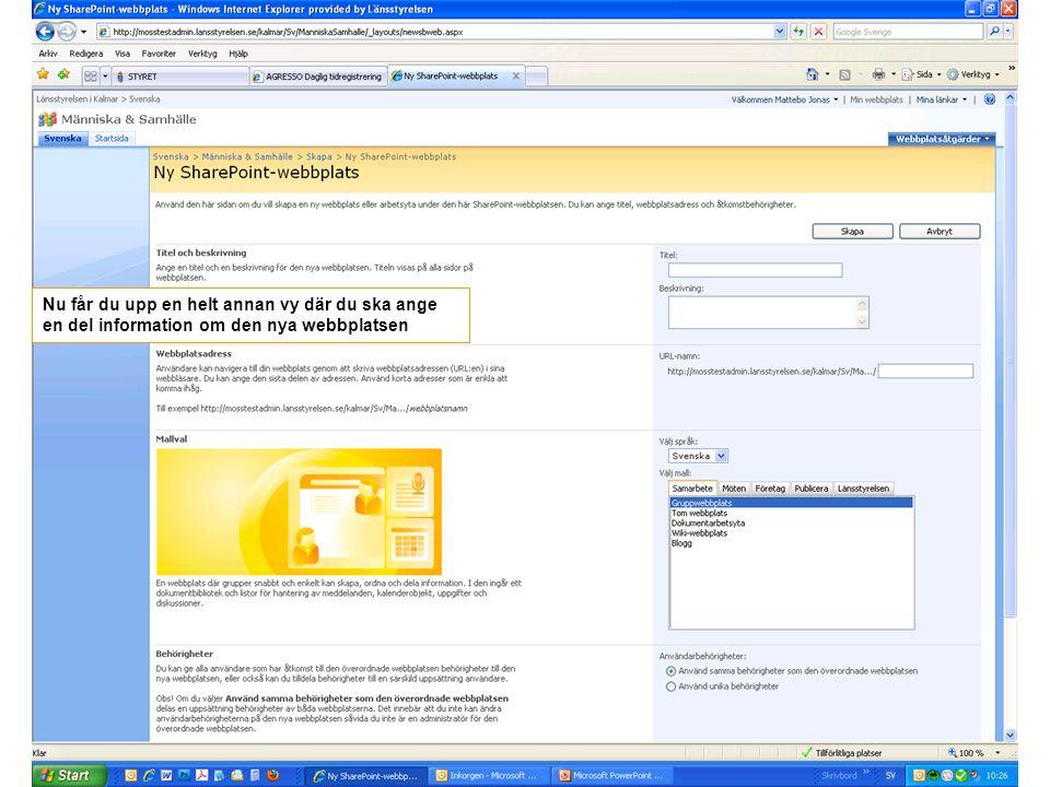 Nu får du upp en helt annan vy där du ska ange en del information om den nya webbplatsen