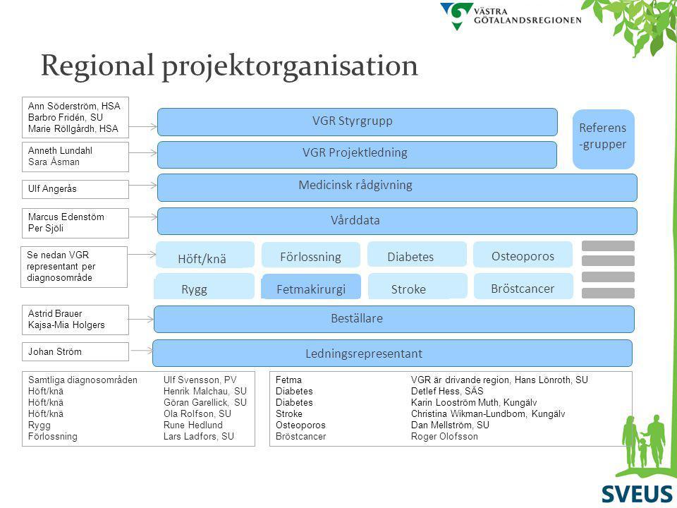 Regional projektorganisation