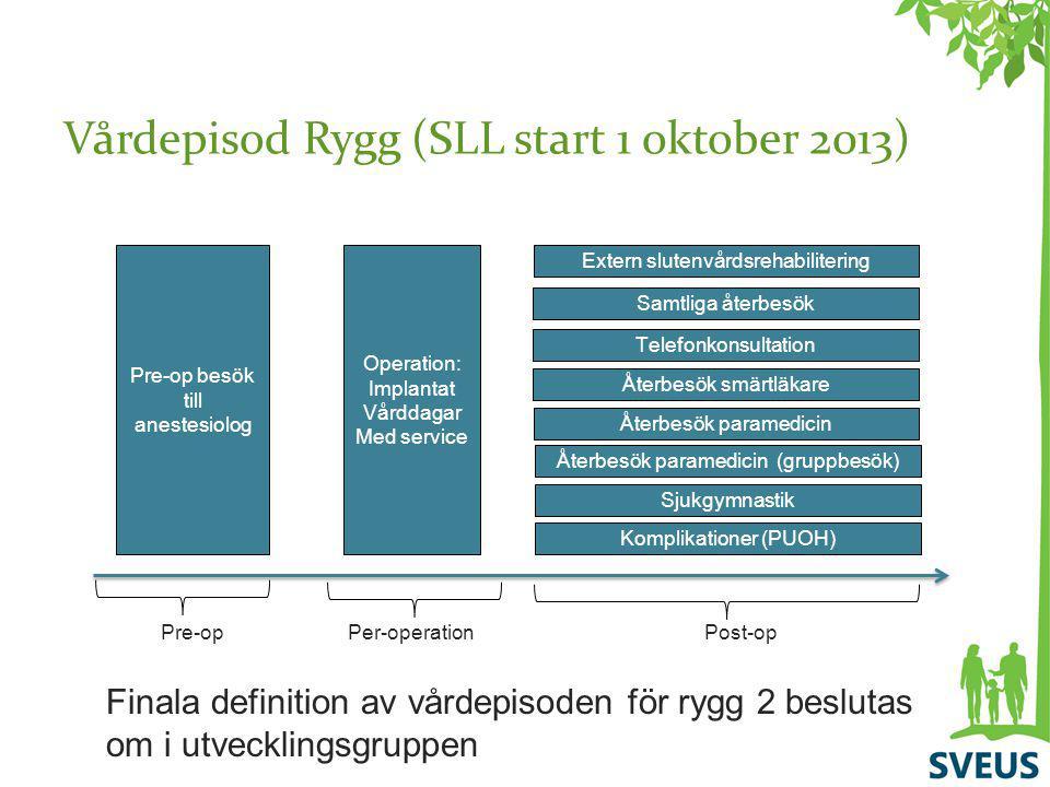 Vårdepisod Rygg (SLL start 1 oktober 2013)