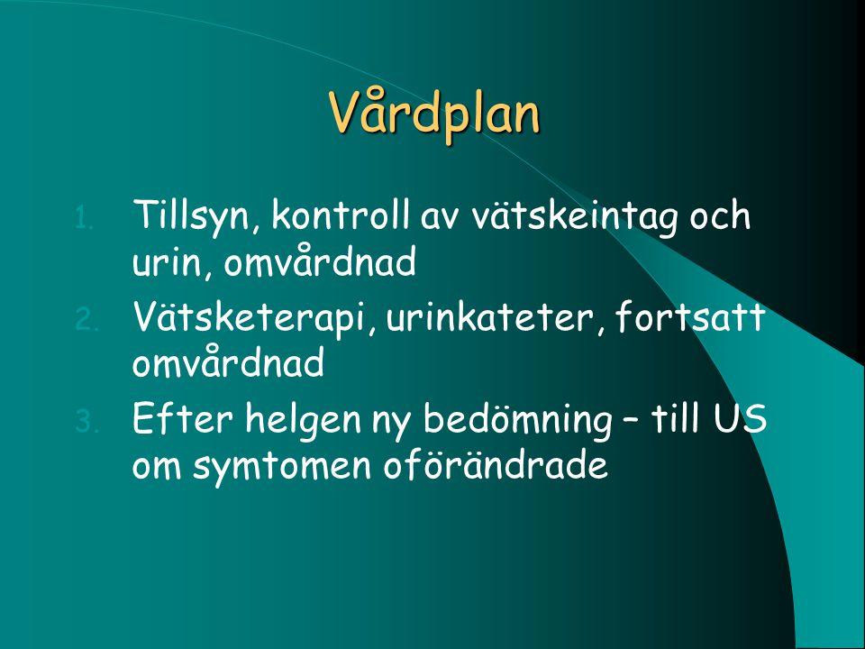Vårdplan Tillsyn, kontroll av vätskeintag och urin, omvårdnad
