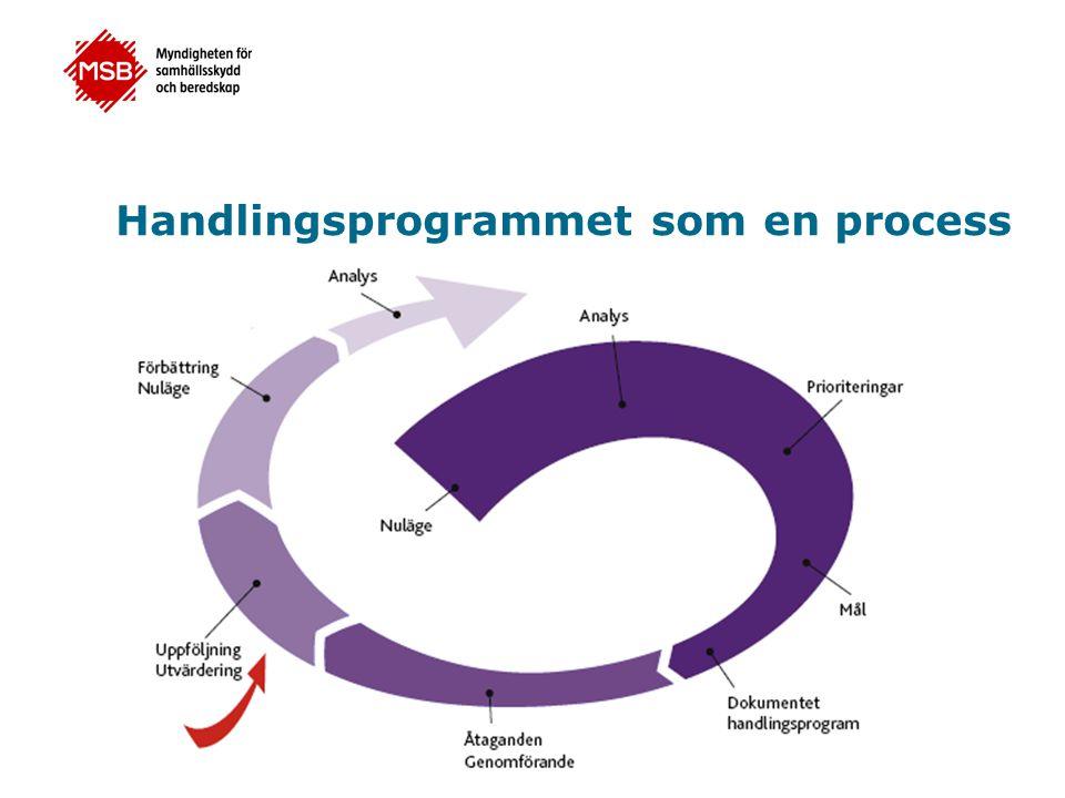 Handlingsprogrammet som en process