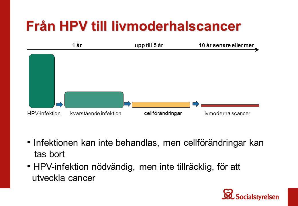 Från HPV till livmoderhalscancer
