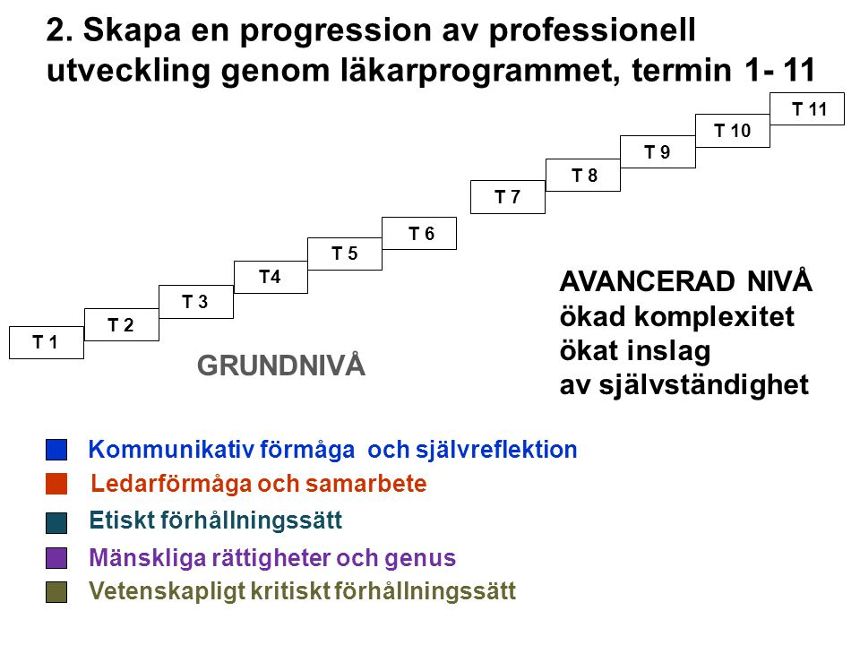 2. Skapa en progression av professionell utveckling genom läkarprogrammet, termin 1- 11