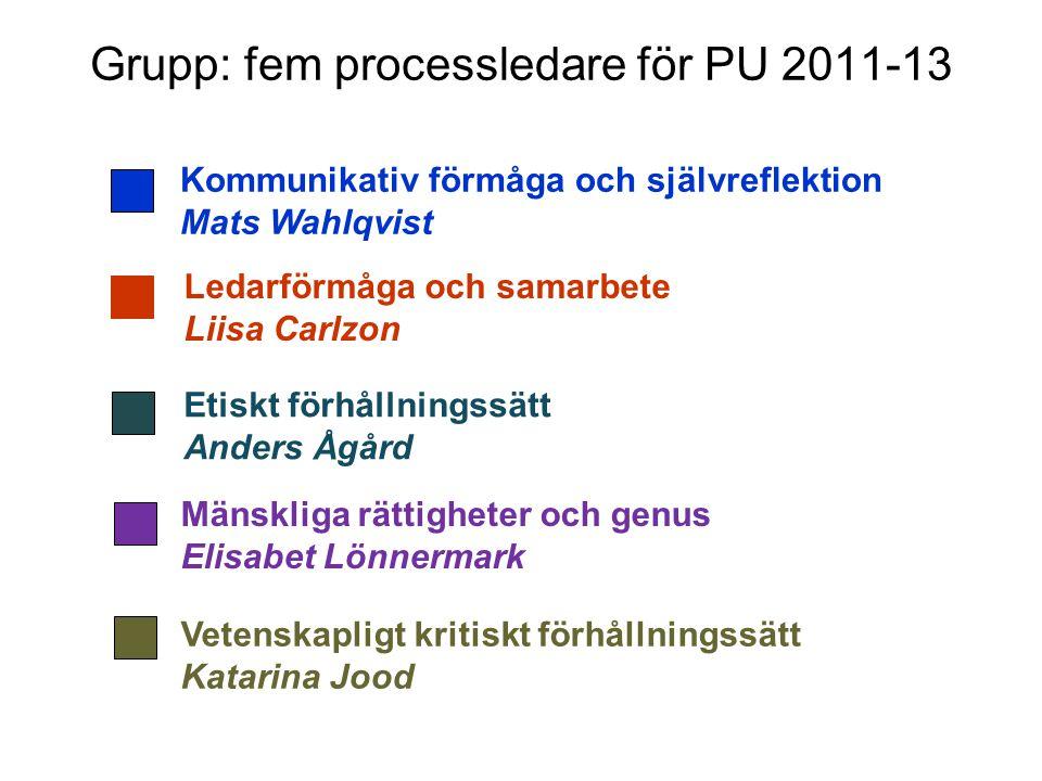 Grupp: fem processledare för PU 2011-13