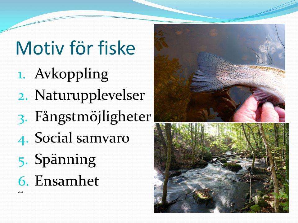 Motiv för fiske Avkoppling Naturupplevelser Fångstmöjligheter