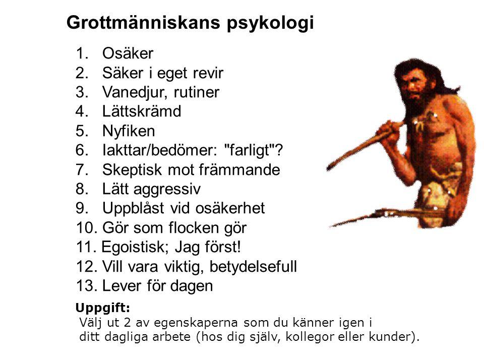 Grottmänniskans psykologi