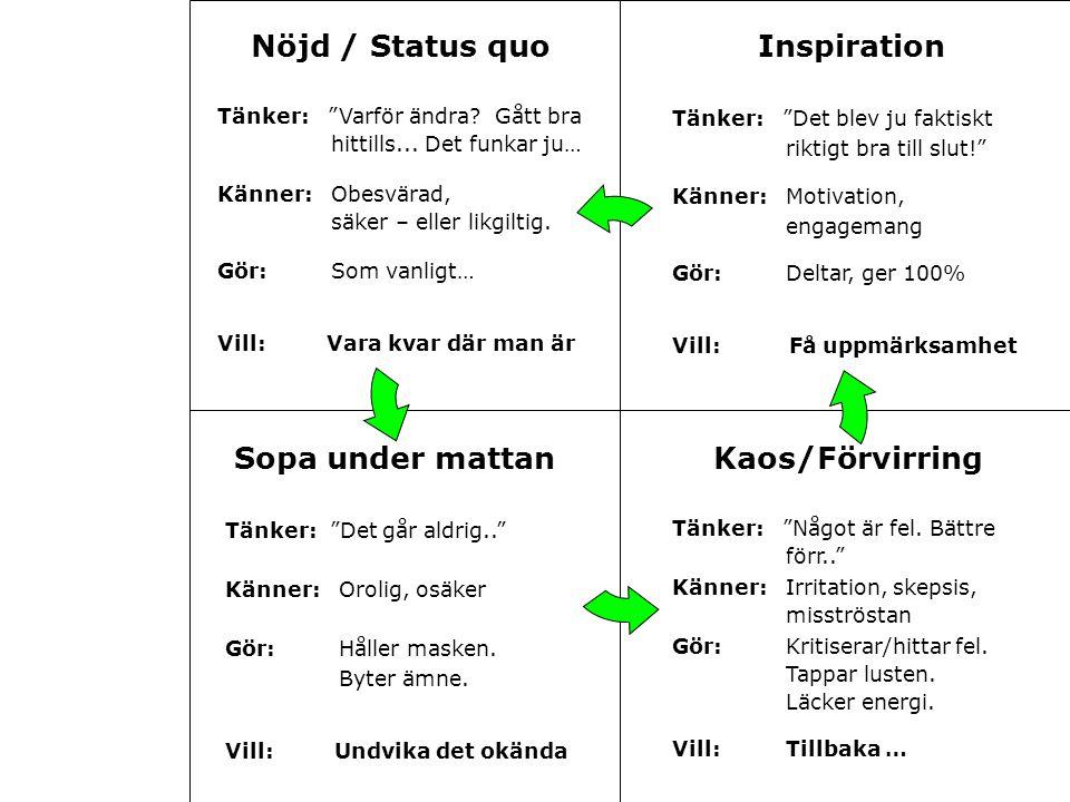 Nöjd / Status quo Inspiration Sopa under mattan Kaos/Förvirring