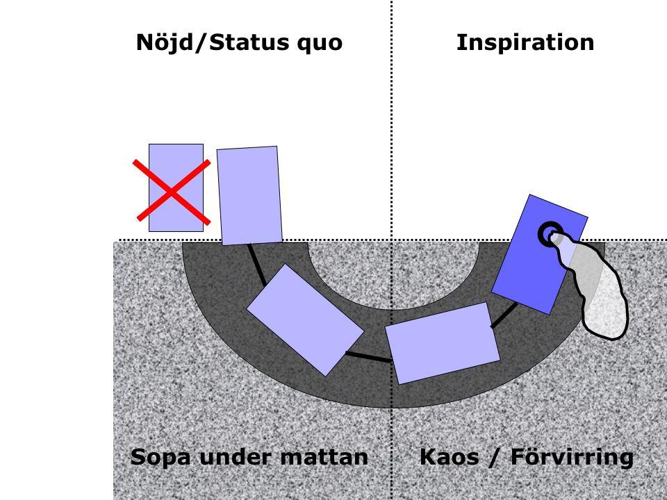 Nöjd/Status quo Inspiration Sopa under mattan Kaos / Förvirring