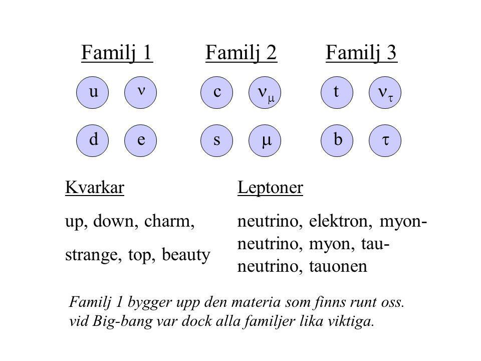 Familj 1 Familj 3 Familj 2 u e d t  b  c  s  Kvarkar