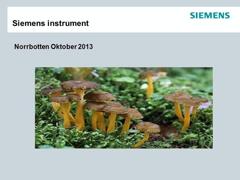 Siemens instrument Norrbotten Oktober 2013