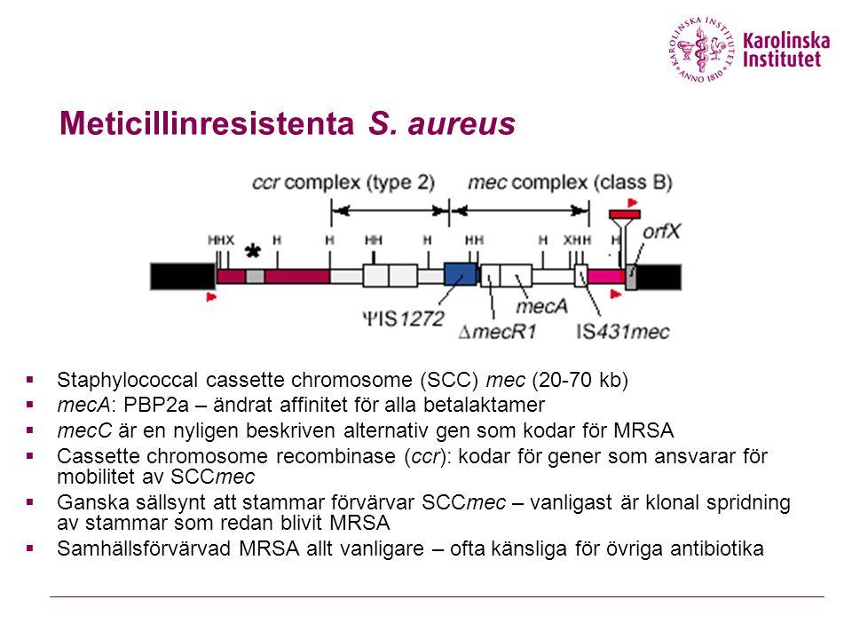 Meticillinresistenta S. aureus