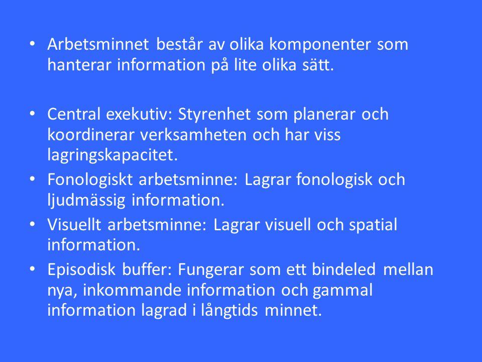 Arbetsminnet består av olika komponenter som hanterar information på lite olika sätt.
