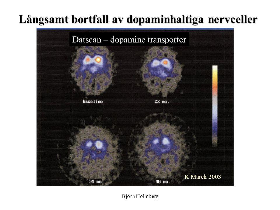 Långsamt bortfall av dopaminhaltiga nervceller