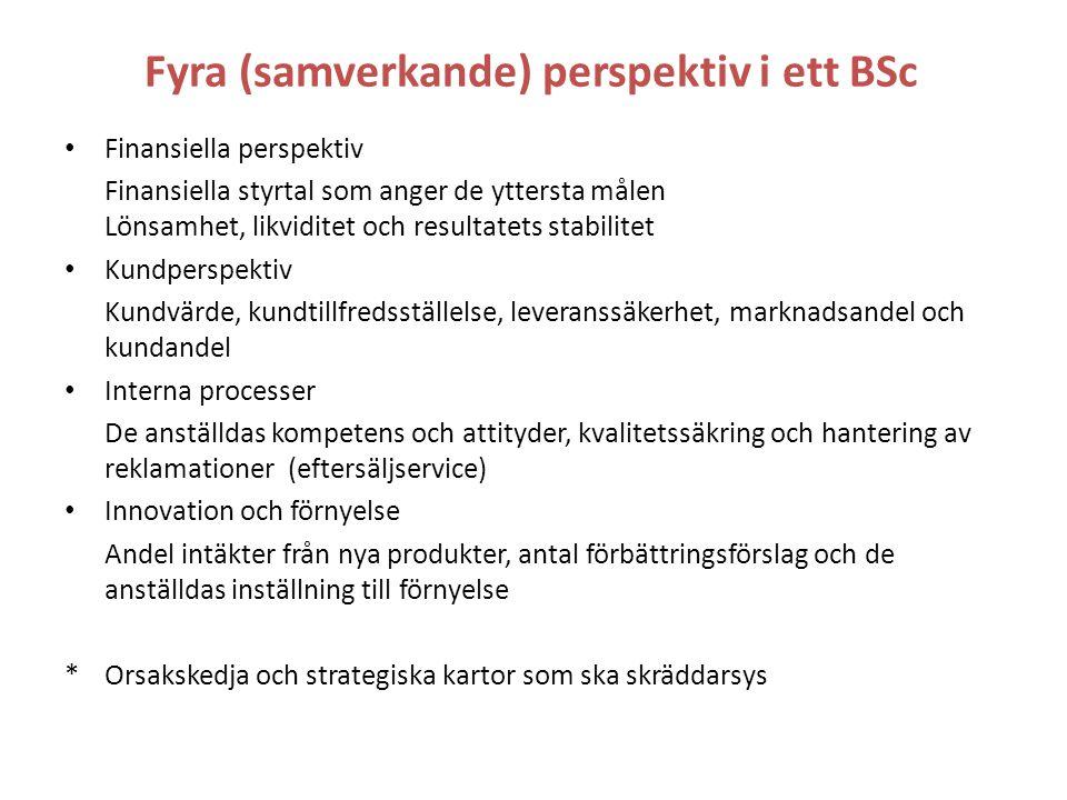 Fyra (samverkande) perspektiv i ett BSc