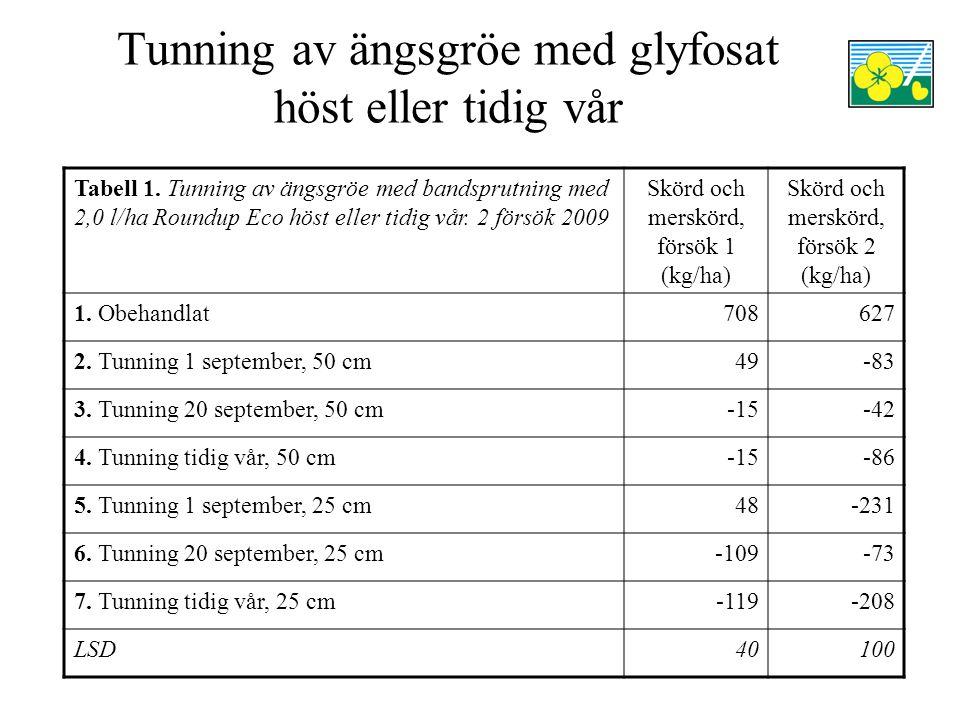 Tunning av ängsgröe med glyfosat höst eller tidig vår
