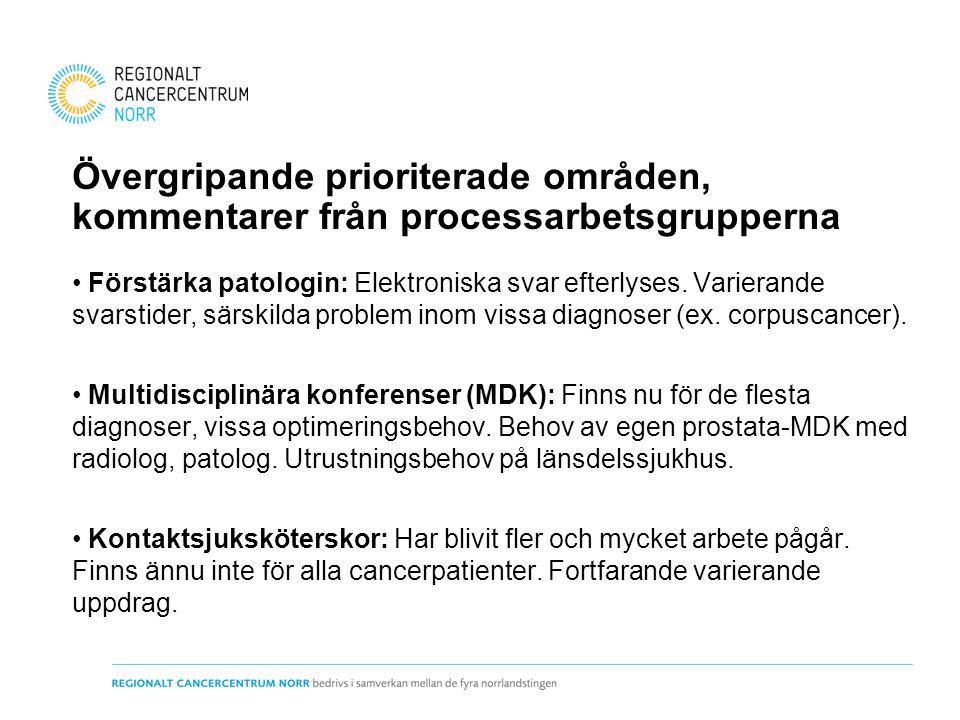 Övergripande prioriterade områden, kommentarer från processarbetsgrupperna
