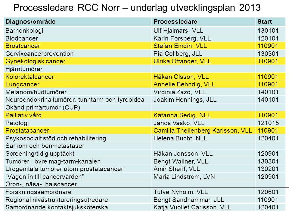 Processledare RCC Norr – underlag utvecklingsplan 2013