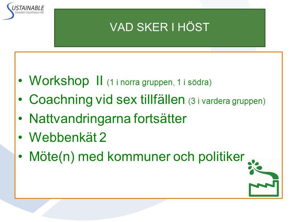 Workshop II (1 i norra gruppen, 1 i södra)