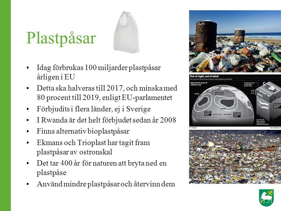 Plastpåsar Idag förbrukas 100 miljarder plastpåsar årligen i EU