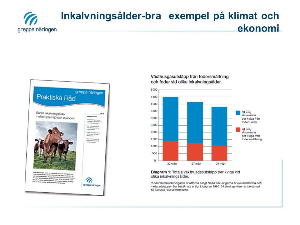 Inkalvningsålder-bra exempel på klimat och ekonomi