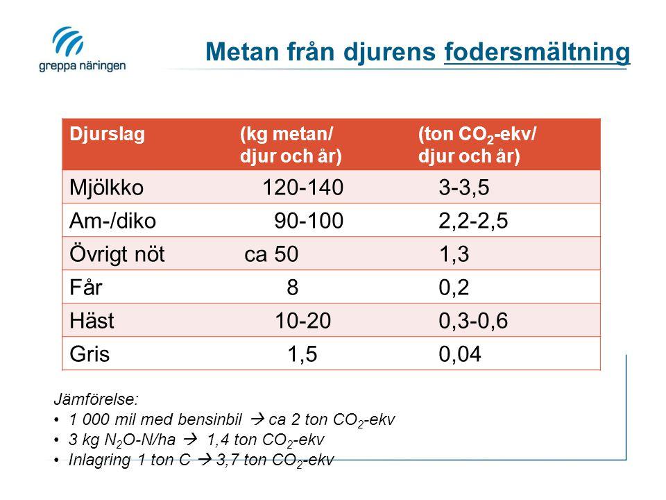Metan från djurens fodersmältning