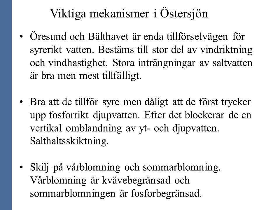 Viktiga mekanismer i Östersjön