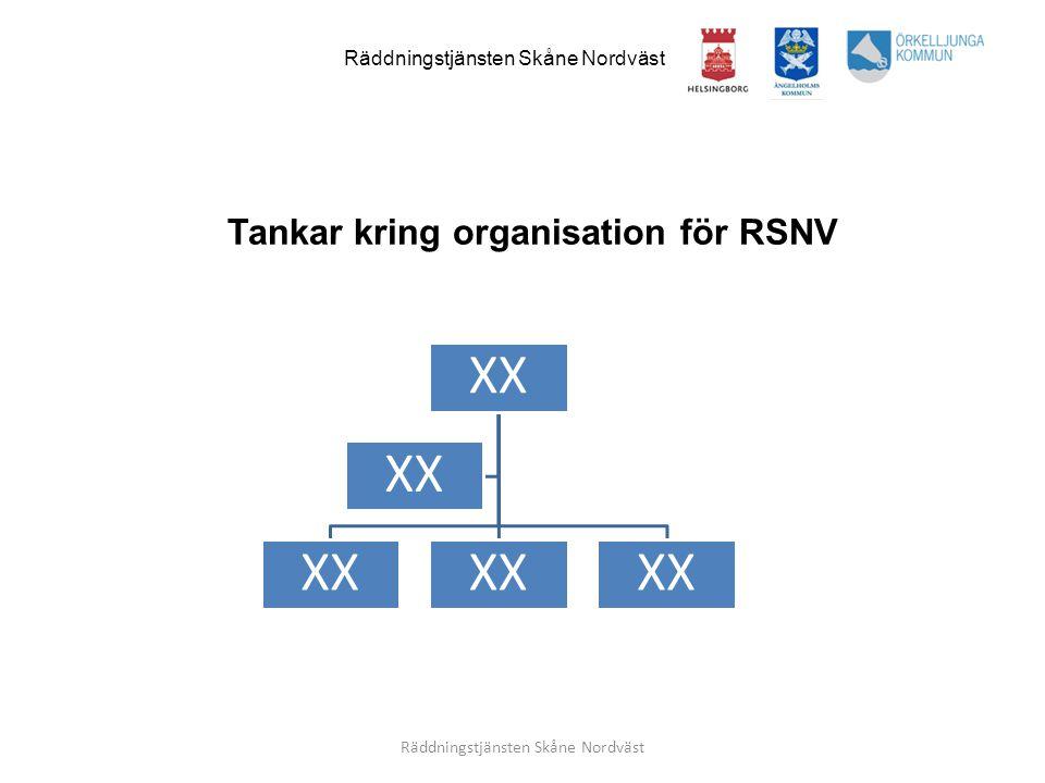 Tankar kring organisation för RSNV