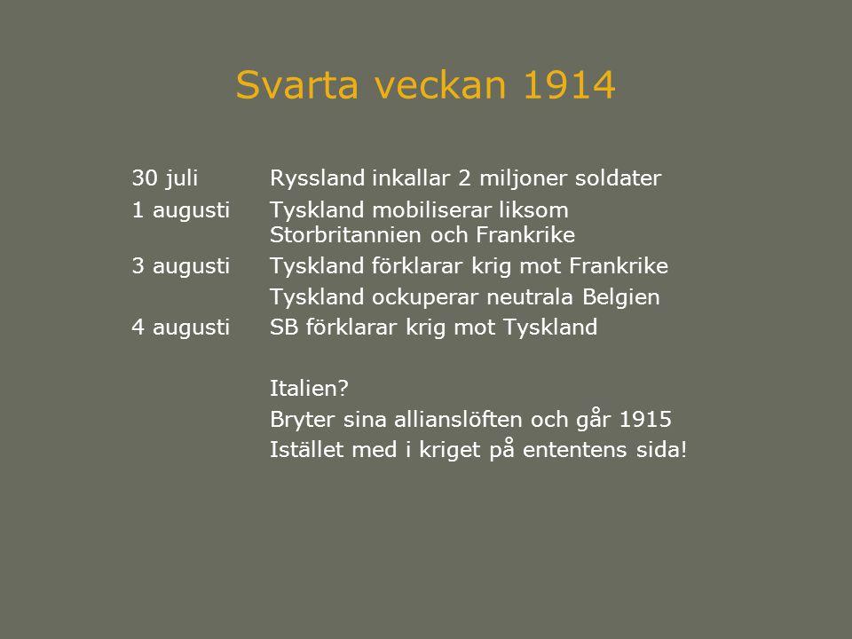 Svarta veckan 1914 30 juli Ryssland inkallar 2 miljoner soldater