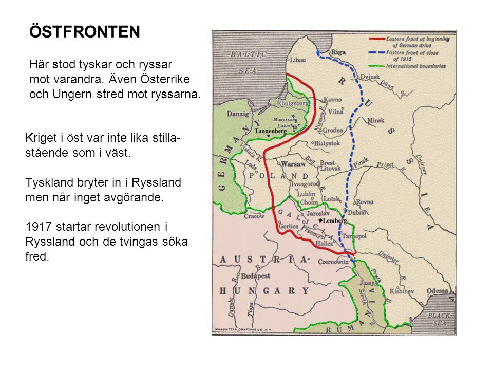 ÖSTFRONTEN Här stod tyskar och ryssar mot varandra. Även Österrike