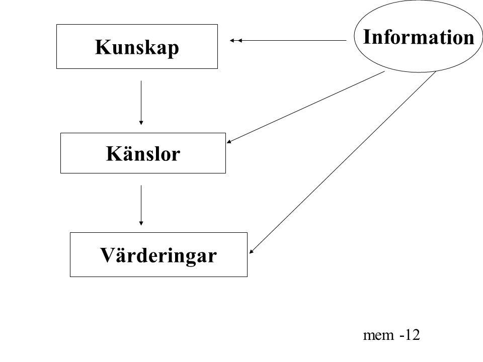 Information Kunskap Känslor Värderingar