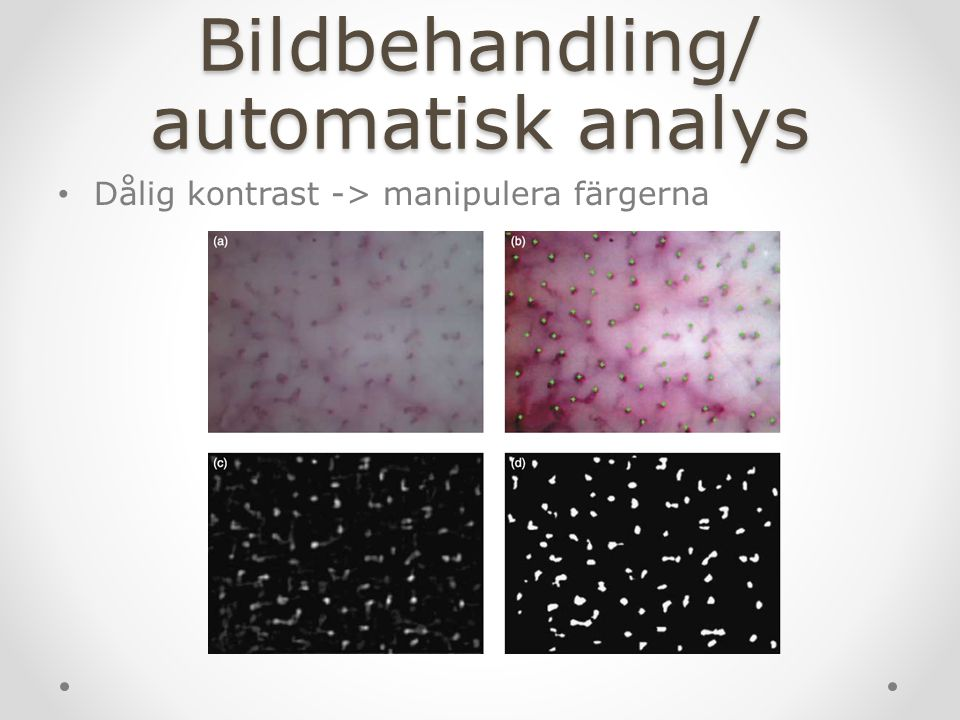 Bildbehandling/ automatisk analys