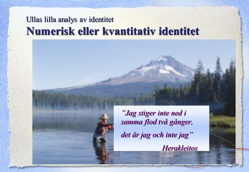Ullas lilla analys av identitet Numerisk eller kvantitativ identitet