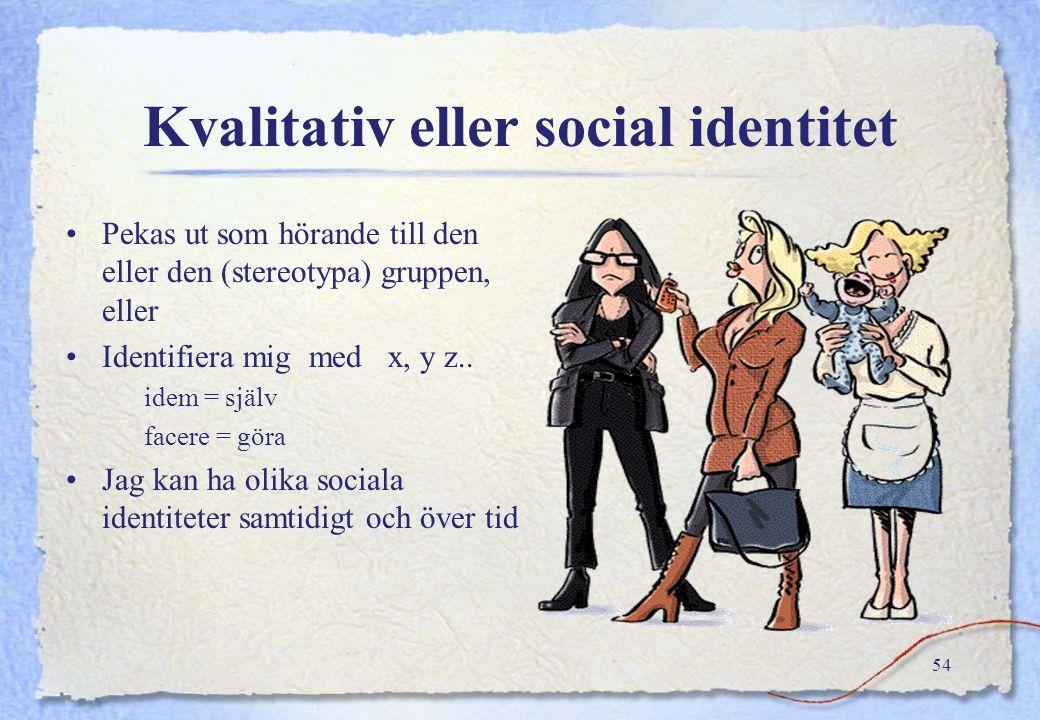 Kvalitativ eller social identitet
