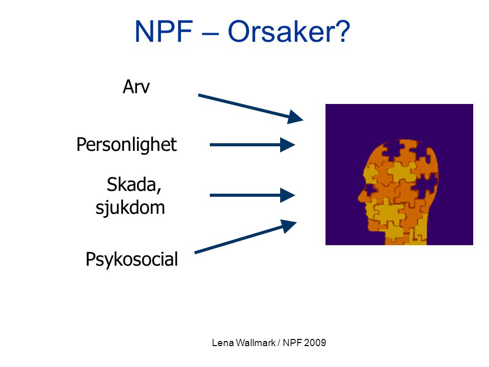 NPF – Orsaker Arv Personlighet Skada, sjukdom Psykosocial