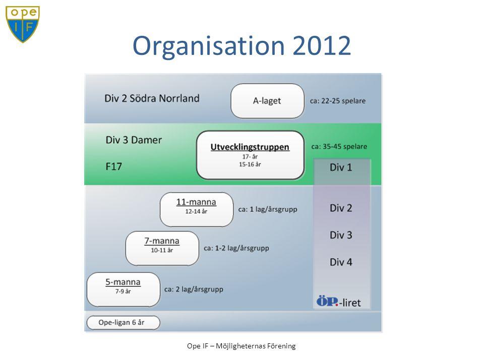 Organisation 2012