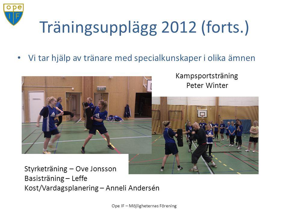 Träningsupplägg 2012 (forts.)