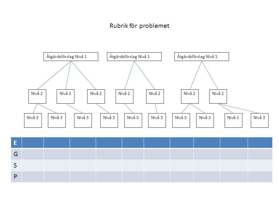 Rubrik för problemet E G S P Åtgärdsförslag Nivå 1